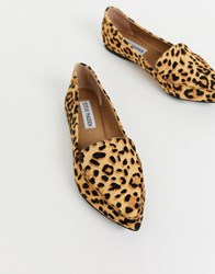 Steve Madden Feather Flat Shoes In Leopard Print Multi