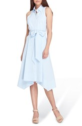 Tahari Sleeveless Stripe Seersucker Shirtdress