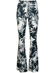 Black Coral Savage Printed Trousers Blue