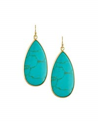 Panacea Dyed Howlite Teardrop Earrings Turquoise