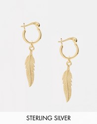 Asos Gold Plated Sterling Silver Feather Hoop Earrings Gold