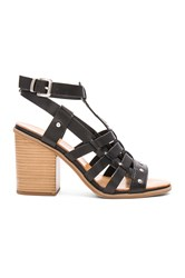 Seychelles Scout It Out Sandal Black