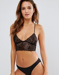 Ultimo Pixie Lace Bralette Black