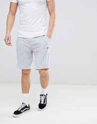Champion Towelling Shorts In Grey