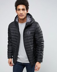 Timberland Lightweight Hooded Down Jacket In Black Black