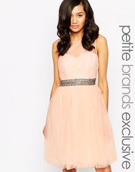 Little Mistress Petite One Shoulder Tulle Prom Dress With Waist Embellishment Softpink