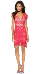 Madison Marcus Humanity Lace Dress Red
