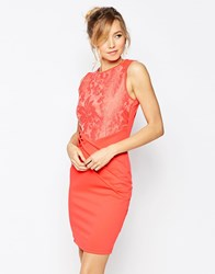 Little Mistress Midi Pencil Dress With Lace Top Coral Green