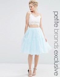 True Decadence Petite Tulle Skirt Soft Blue