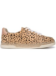 Dolce Vita Madox Sneakers Neutrals