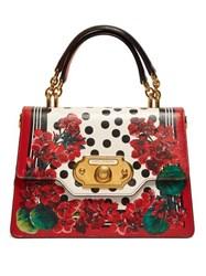 Dolce And Gabbana Welcome Geranium Print Leather Bag Red Multi