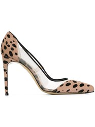Bionda Castana Leopard Pattern Pumps Pink And Purple