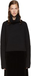 Haider Ackermann Black Cropped Turtleneck