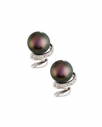 Belpearl 14K Black Freshwater Pearl And Diamond Swirl Stud Earrings