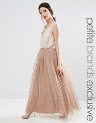 True Decadence Petite All Over Tulle Full Maxi Skirt Coffee Tan