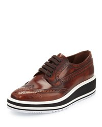 Prada Platform Brogue Trim Leather Oxford Tobacco Tabacco Brown