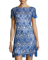 Jax Lace Short Sleeve Sheath Dress Electric Blue