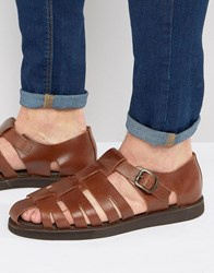 Red Tape Gladiator Sandals In Brown Brown
