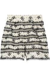 Zimmermann Pleated Embroidered Corded Lace Shorts Black