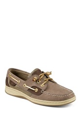 Sperry Ivyfish Boat Shoe Gray