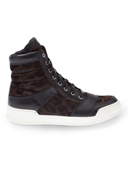 Balmain Leopard Print Hi Top Sneakers Brown