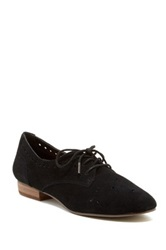 Restricted Regina Suede Oxford Black