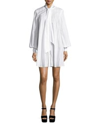 Mcq By Alexander Mcqueen Long Sleeve Pinstriped Poplin Tunic Dress Ivory
