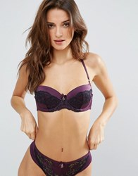 Ted Baker Glamour Bra Purple