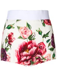 Dolce And Gabbana Peony Print High Waisted Shorts White