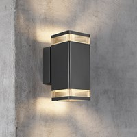Amara Elm Double Outdoor Wall Light Black