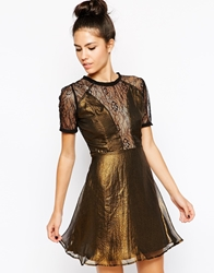 Wyldr Gothic Skater Dress With Lace Insert Gold
