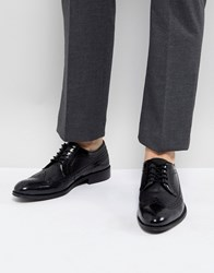 Zign Leather Brogue Shoes In Black