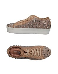 Alexander Smith Sneakers Sand