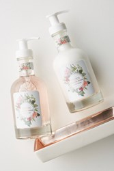 Mistral Hand Soap Lotion Caddy Rose