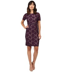 Adrianna Papell Short Sleeve Lace Sheath Dress Plum Wine Tan Women's Dress Purple