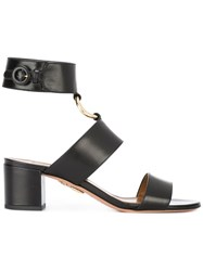 Aquazzura 'Safari' Sandals Black