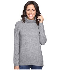 Brigitte Bailey Dita High Neck Long Sleeve Sweater Heather Grey Women's Sweater Gray