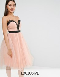 Rare London Lace Top Tulle Dress Nude Pink