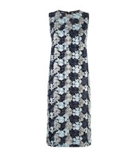 Dkny Embroidered Lace Shift Dress Female Blue