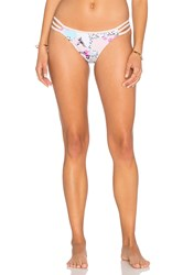 Seafolly Ocean Rose Brazilian Bottom Pink