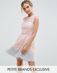 Little Mistress Petite Allover Lace Mini Prom Skater Dress With Contrast Hem Nude Pink