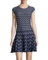 Max Studio Chevron Print Fit And Flare Knit Dress Navy Cream