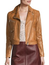 Set Cropped Leather Moto Jacket Chipmunk