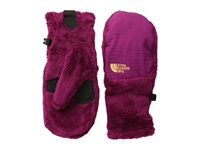 The North Face Denali Thermal Mitt Dramatic Plum Dramatic Plum Extreme Cold Weather Gloves Pink