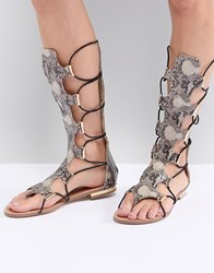 Morgan Knee High Gladiator Sandal Multi