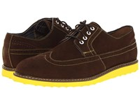 Hush Puppies Full Wing Wedge Espresso Suede Men's Lace Up Wing Tip Shoes Brown