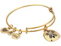 Alex And Ani Sand Dollar Ii Bangle Gold Bracelet