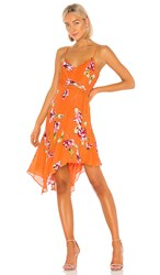 Parker Monroe Dress In Orange. Orange Magnolia