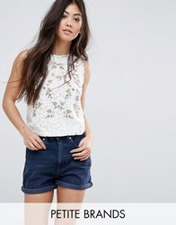 New Look Petite Embroidered Lace Shell Top White