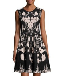 Carmen Carmen Marc Valvo Floral Print Knit Fit And Flare Dress Black Pink